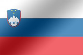 Slovénie : les 10 artistes de l'EMA 2016 !