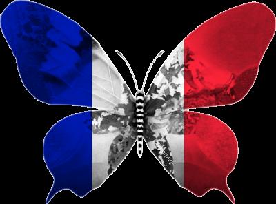 France 2013 : Je vais te faire du rock