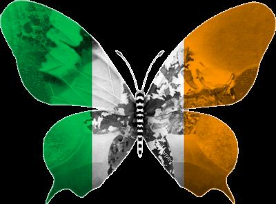 Irlande 2013 : L'amour, toujours l'amour…