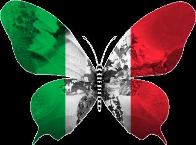 Italie 2013 : Une chanson déjà couronnée