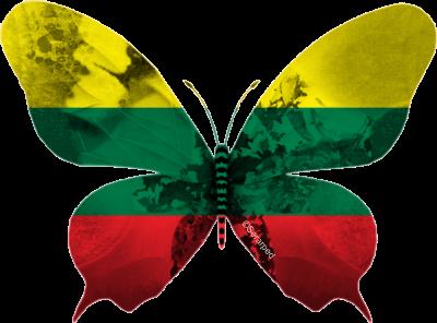 Lituanie 2013 : Le charmeur