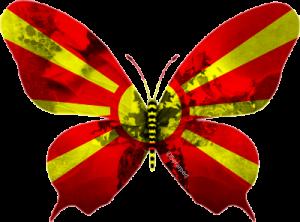 Macédoine-papillon