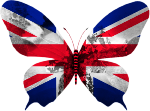 Royaume-Uni-papillon