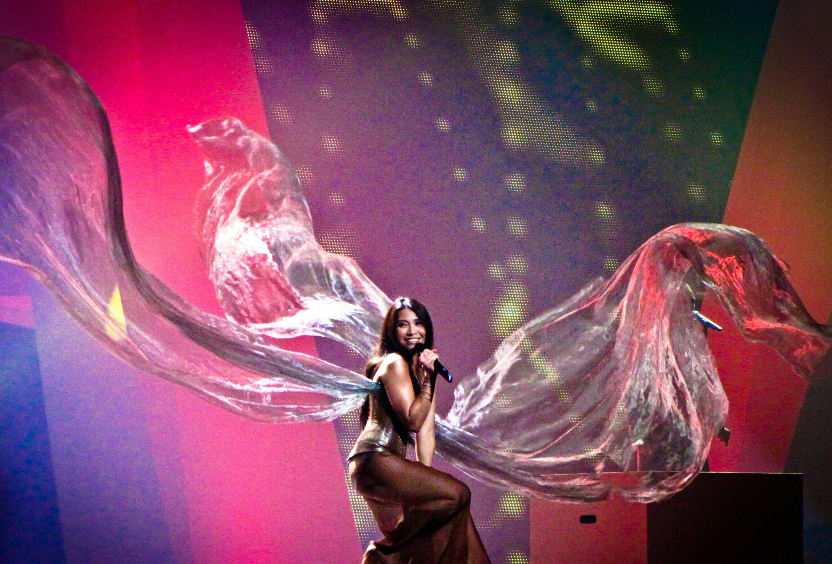 D'un Eurovision à l'autre : Anggun