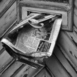 Le petit journal estival #2
